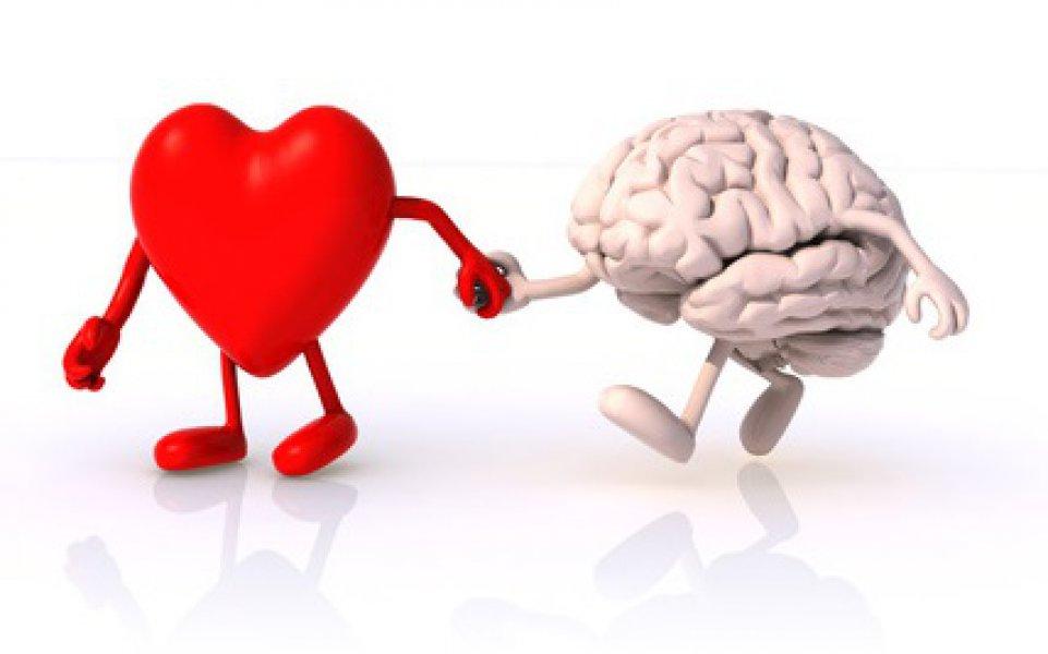 razum-srce-emocionalna-inteligencija-mozak