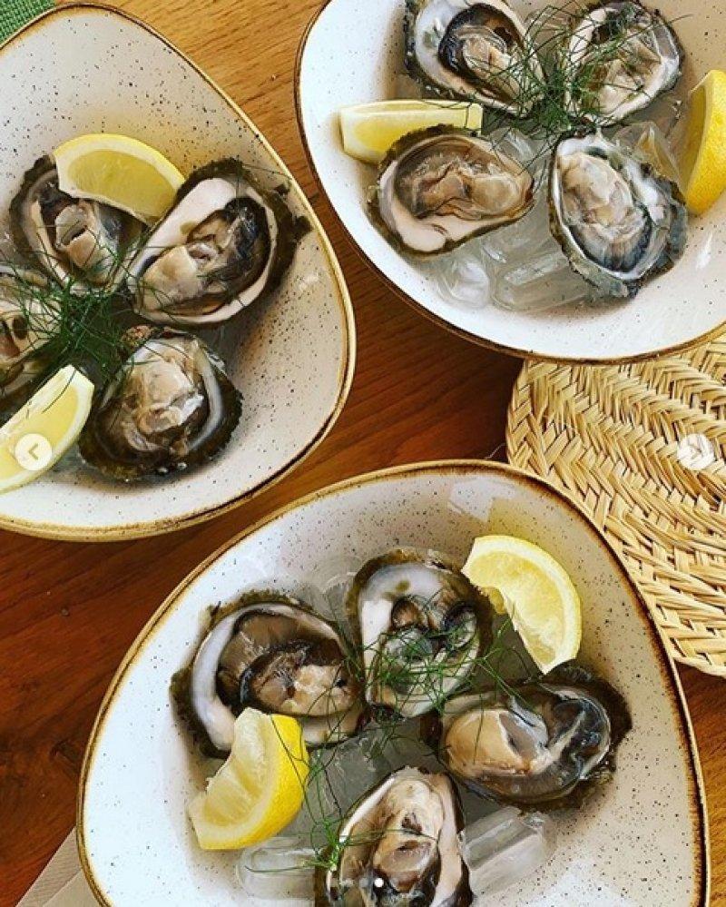 skoljke-morska-hrana