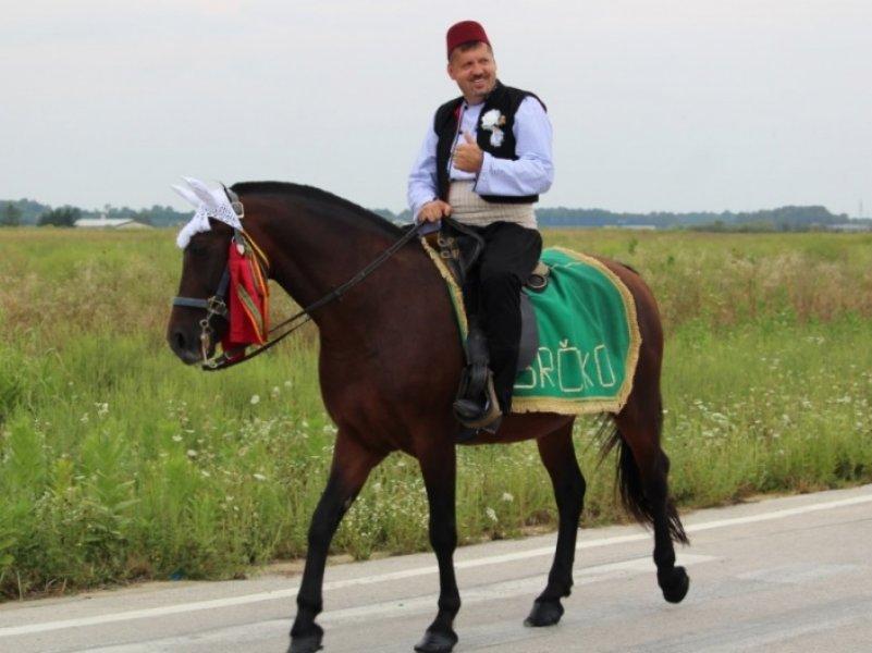 mensur-peljto-konj